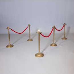 Gold Stands and Red Ropes Parade Float Kit